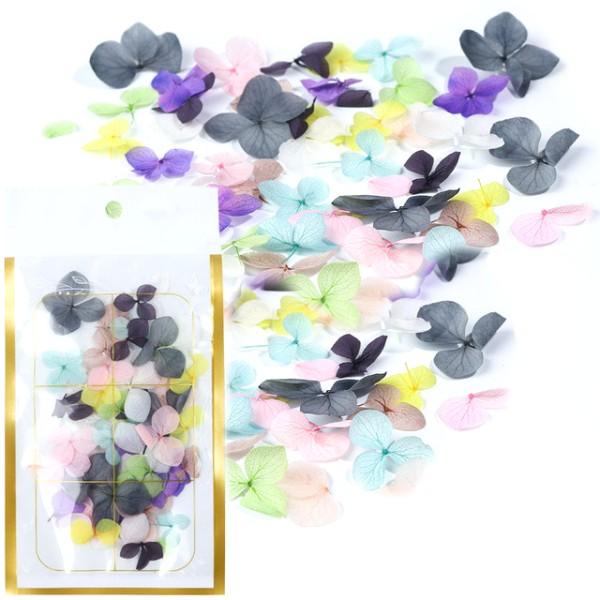 JUSTNAILS Trockenblumen Dry Flowers Set